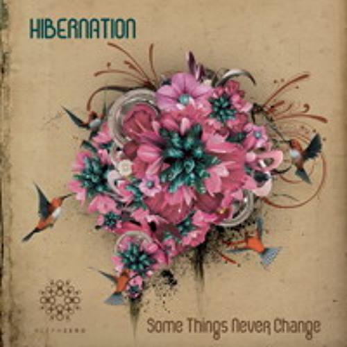 Hibernation - Glitch Police