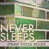 Straw Sticks Bricks