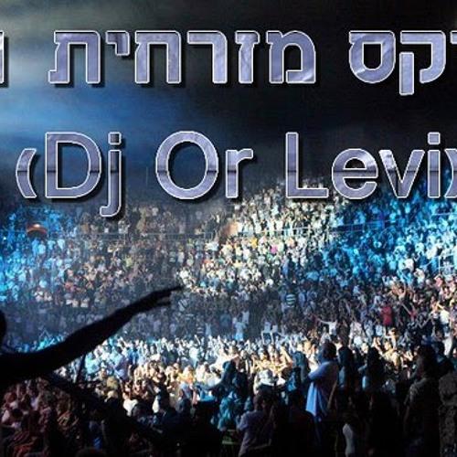 מגמיקס מזרחית 2011 (Dj Or Levi)