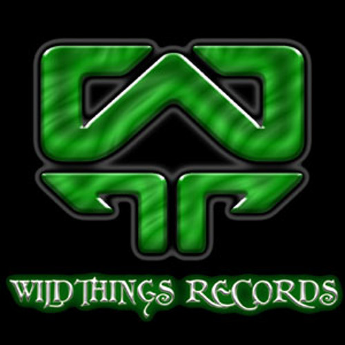 Maple styrups  (Southwild&Ajja Wildthings records)