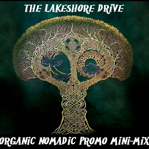 Side A of The Lakeshore Drive Organic Nomadic Promo. MP3