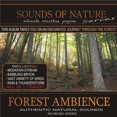 Forest Ambience