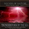 Free Download Thunderstorm By The Sea Sounds of Nature Mp3