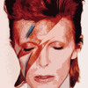 David Bowie - Heroes- In style of X Factor (Por @DayRoyala)