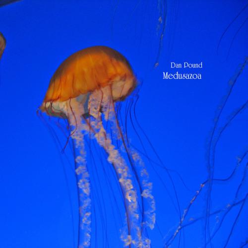 03 - Dan Pound - Living Fossil - Medusazoa