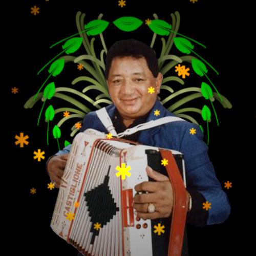 Lisandro Meza - Del puente a la Alameda (Dengue Dengue Dengue! Remix)