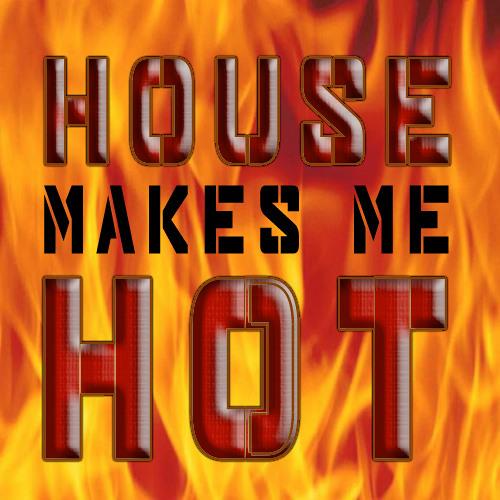 House makes me hot - BeatBlenderz
