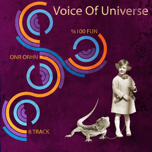 Voice Of Universe -The Spirit Of India