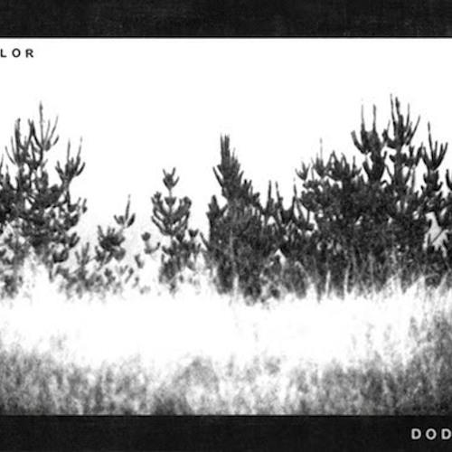 The Dodos - Hunting Season