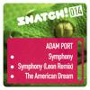 Adam Port - Symphony (Extract)