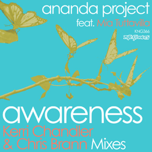Awareness // Ananda Project // Chris Brann Dub