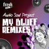 Audio Soul Project / My Bluff / Dairmount & Berardi Perspective / Fresh Meat 2011