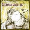 Dinosaur Jr. - Show Me The Way