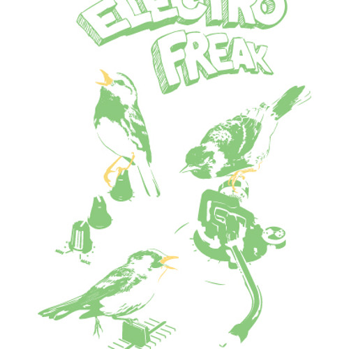 Dj Offset-Electro Freak