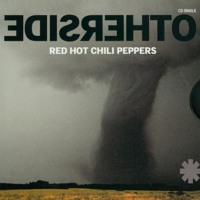 Red Hot Chili Peppers - Otherside (System Nipel Remix)