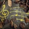 Lady Labyrinth - Ludivico Einaudi (Piano)