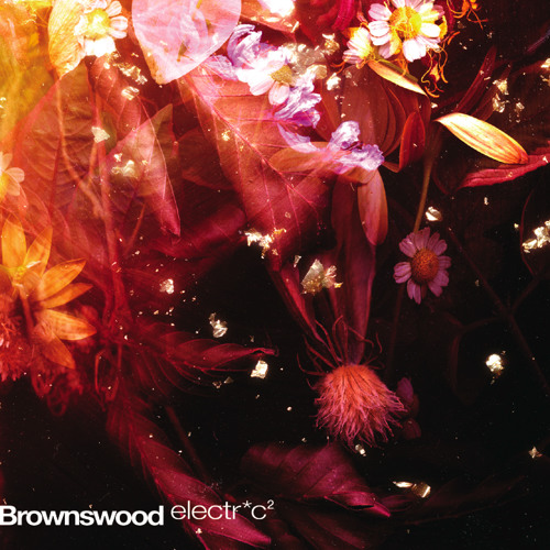 Brownswood electr*c 2 // Album Teaser
