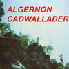 """Spit Fountain"" by ALGERNON CADWALLADER"
