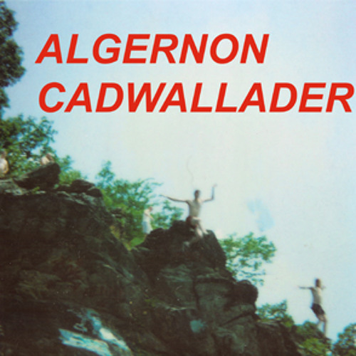 """""""Spit Fountain"""" by ALGERNON CADWALLADER"""