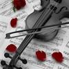 My Memory from Winter Sonata violin version