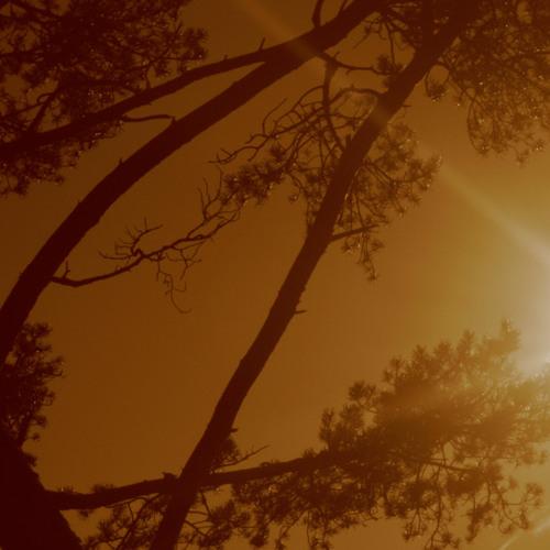 Post Summer Blues (24april2011)