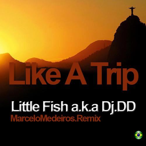 Little Fish aka DJ DD - Like A Trip (Original Mix)