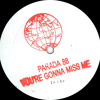 Parada 88  - You're Gonna to Miss Me (White Label)