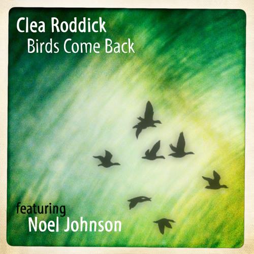 Birds Come Back