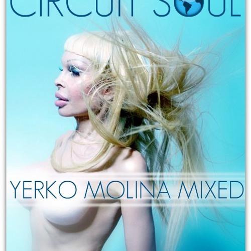 Circuit Soul - The Ultimate Set ( Yerko Molina Mixed )