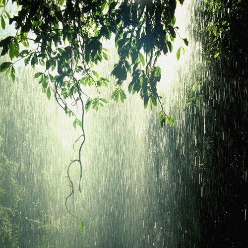 Beautiful and relaxing sound of rain