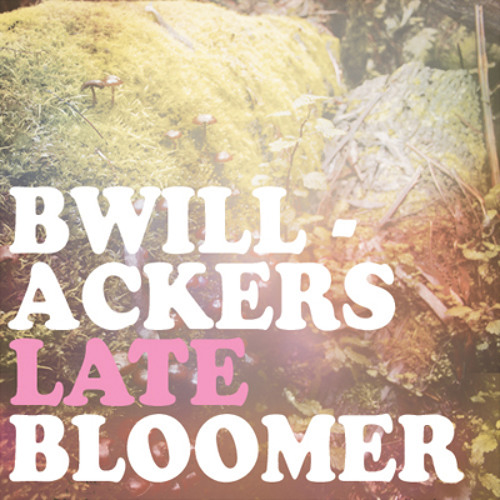 BWillackers, the LATE BLOOMER