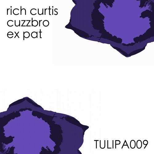 Rich Curtis - Cuzzbro (Deepfunk Remix)