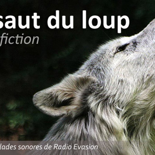SautduLoup Fiction-01