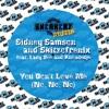 Sidney Samson & Skitzofrenix vs Shaggy - You Don't Love Me (JohnyMyko's Mr Bombastic Edit)