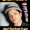 BRUNO MARS  JUST THE WAY U ARE *** CBK DS HARD HOUSE REFIXX***