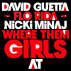 David Guetta ft. Flo-Rida & Nicki Minaj - Where them girls at (Nicky Romero Remix) mp3