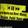 David Guetta feat Novel - Missing You (Mustafa Parlak Remix)