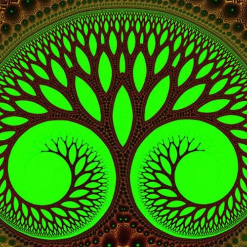 Naan - OrganicSynthetic