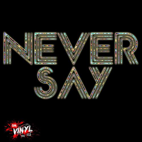 Dr.Vinyl presents Never Say