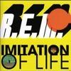 Imitation Of Life (Mtv Unplugged)