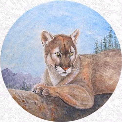 Freddy cougar panama by jamuelsaxon jamuel saxon - Pictures of freddy cougar ...