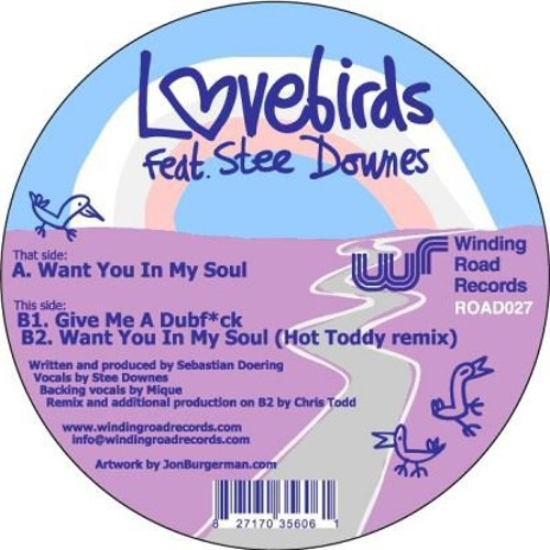 LOVEBIRDS FEAT STEE DOWNES | WANT YOU IN MY SOUL (HOT TODDY REMIX)
