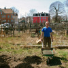 Somerset Community Garden - Phil Edmonds