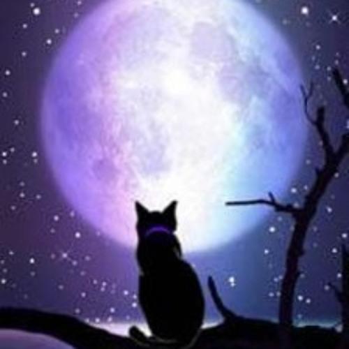 Yaroslav Kulikov - Moonlight in my hands ( cut)
