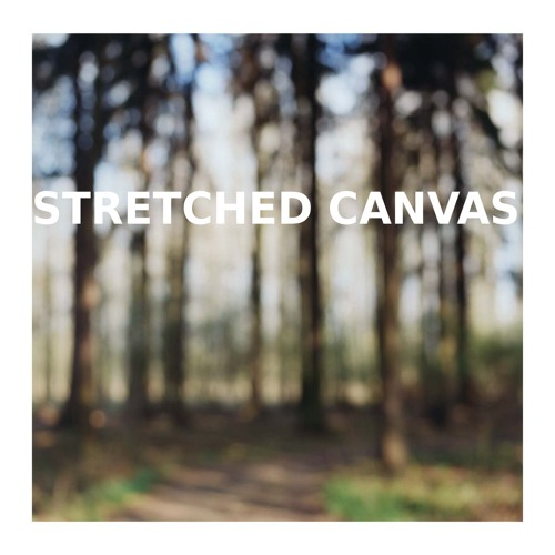Stretched Canvas • Flight Track