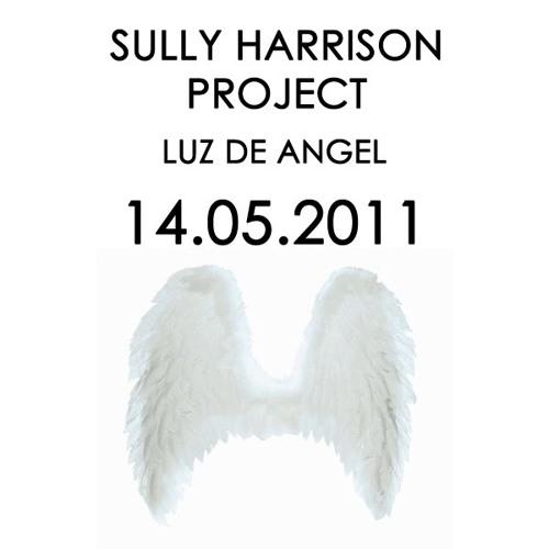 Sully Harrison Project - Luz de Angel
