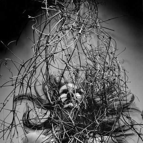 Suspended in Gaffa (Kate Bush) feat. Phoebe Oglesbee
