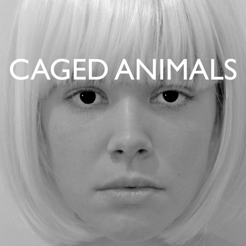 Caged Animals - All The Beautiful Things In The World