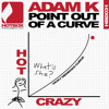 Adam K - Point Out of a Curve (low quality preview) [Hotbox Digital]