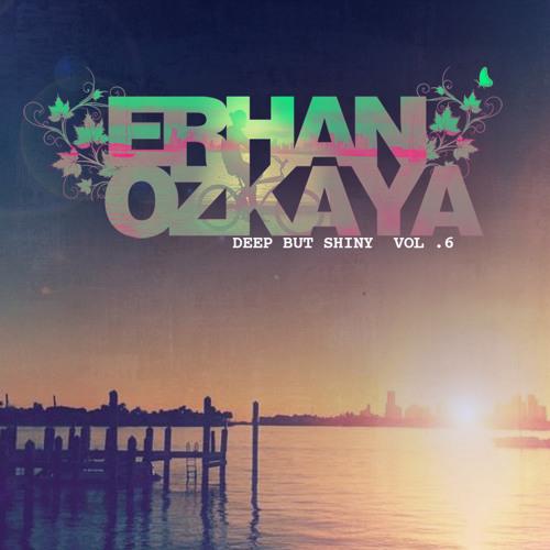 Erhan Ozkaya-Deep But Shiny Vol.6